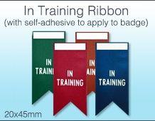 In Training Ribbon
